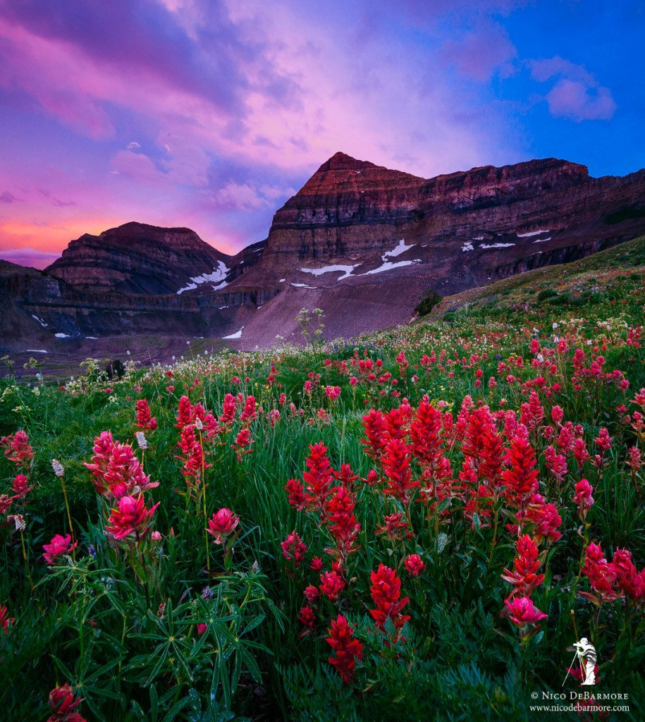 Timpanogos Sunset